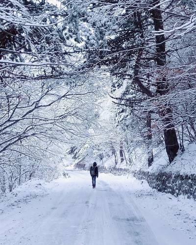 Снежная дорога на Ай-Петри