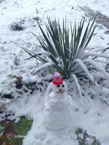 И у нас выпал снег!