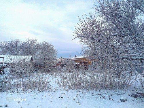 Зима в саду..