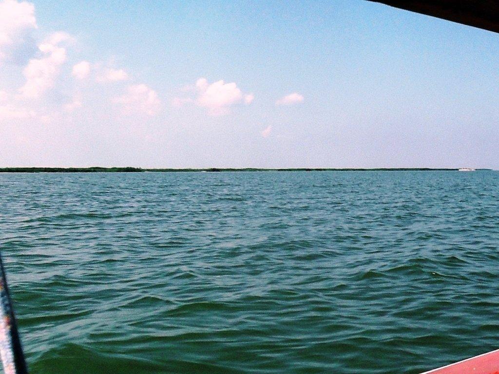 В море, на яхте, у Ачуевской косы, август...002. 003