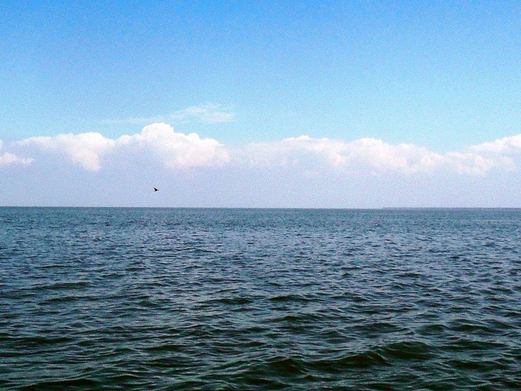 В море, на яхте, у Ачуевской косы, август...002. 001