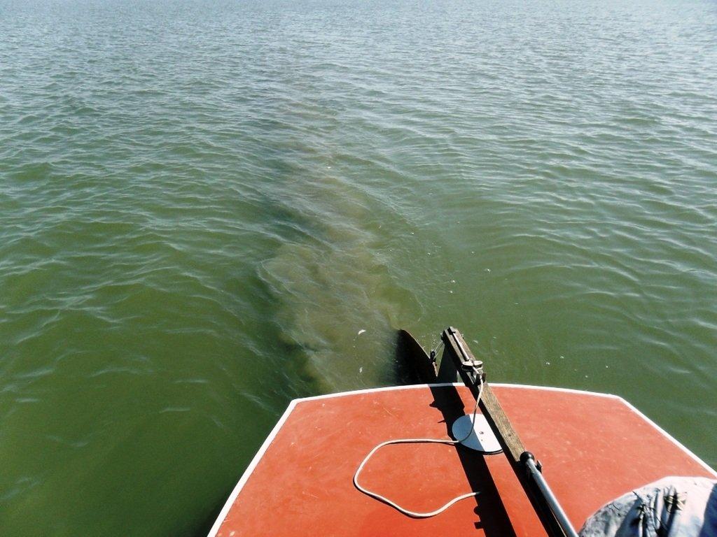 У Ачуевской косы, в яхтенном походе, август, с парусом... 003. 005