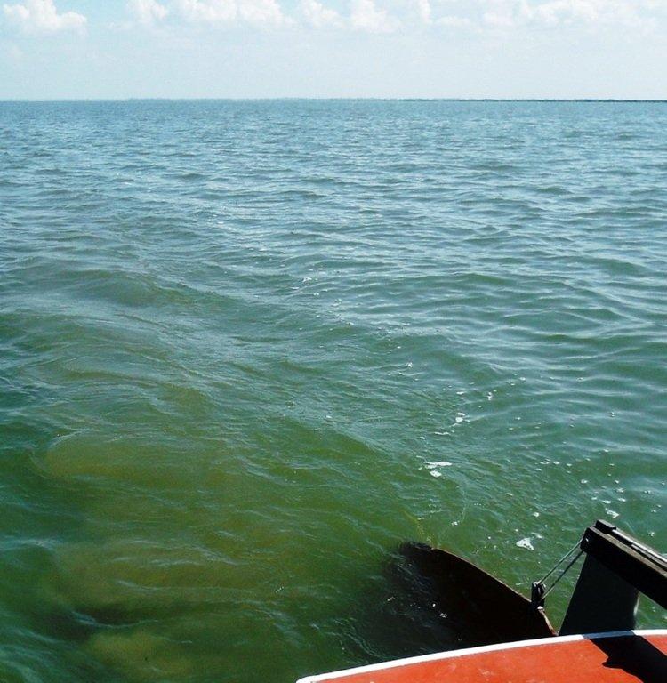 На яхте, в походе, август, море Азовское... 004. 011