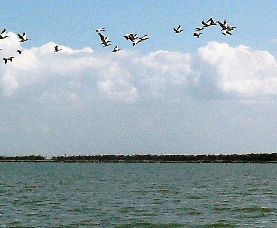 На яхте, в походе, август, море Азовское... 004. 008