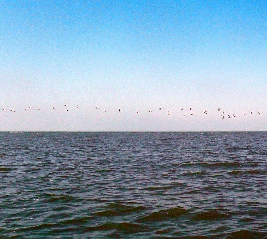 На яхте, в походе, август, море Азовское... 004. 005