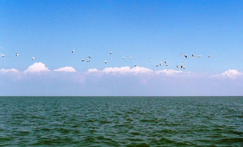 На яхте, в походе, август, море Азовское... 004. 004