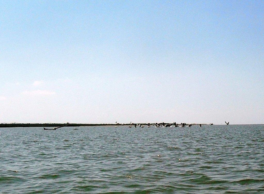 На яхте, в походе, август, море Азовское... 004. 003