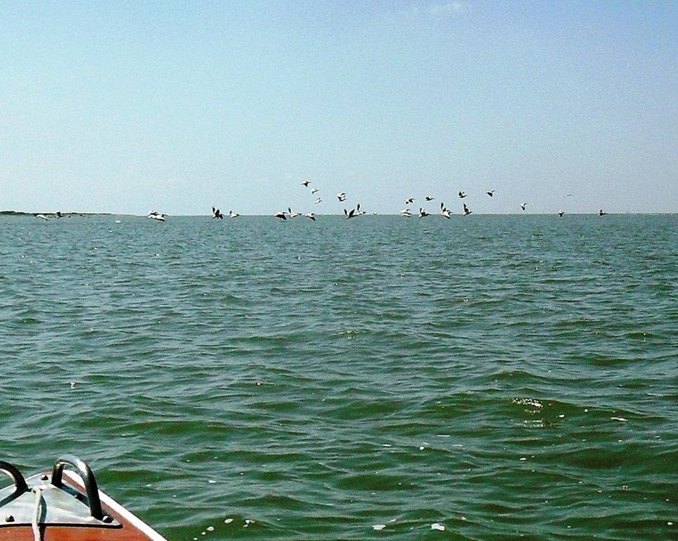 На яхте, в походе, август, море Азовское... 004. 002
