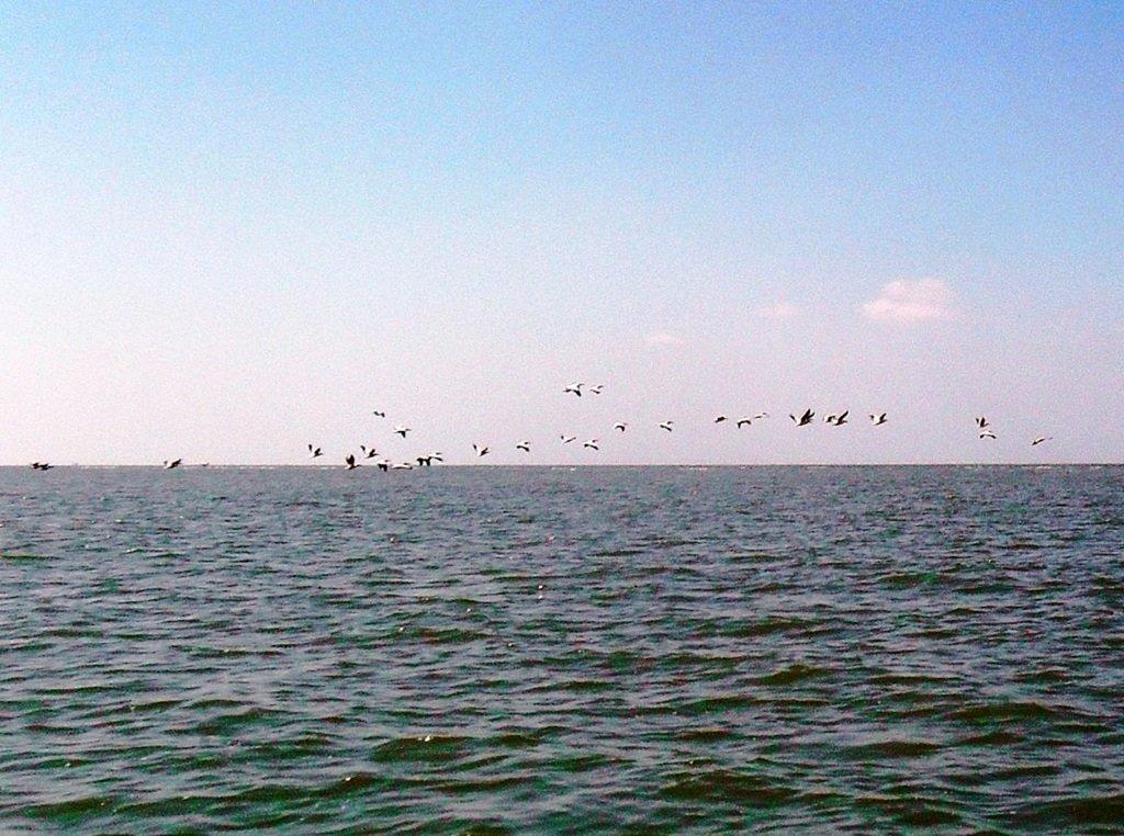 На яхте, в походе, август, море Азовское... 004. 001