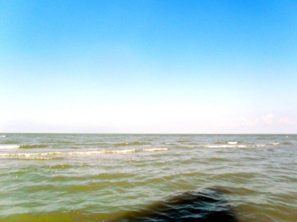 В море, у косы Ачуевской, с птицами, на яхте... 005. 012
