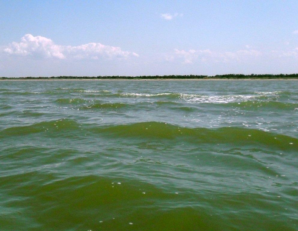 Азовское море, у берегов, Ачуевская коса, яхтенный поход... 006 ... 002