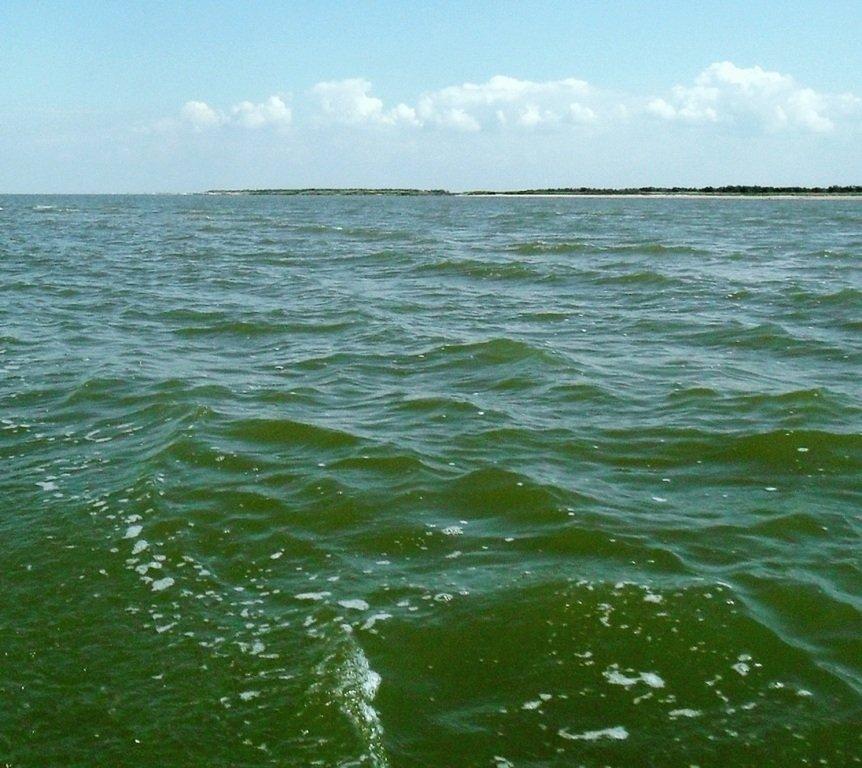 Азовское море, у берегов, Ачуевская коса, яхтенный поход... 006 ... 007