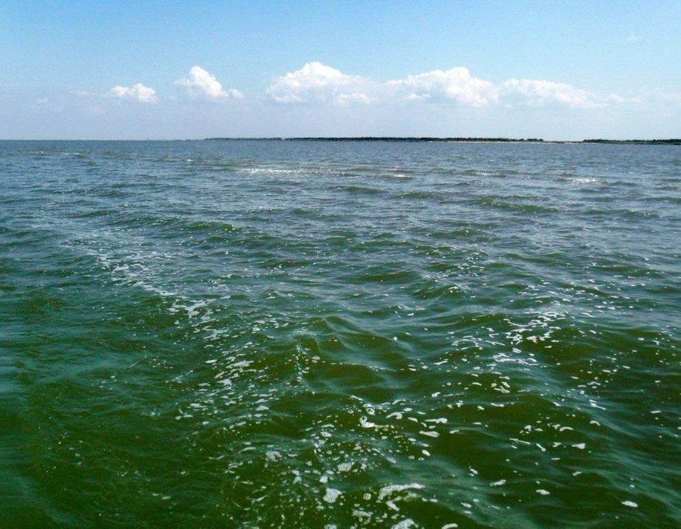 Азовское море, у берегов, Ачуевская коса, яхтенный поход... 006 ... 008