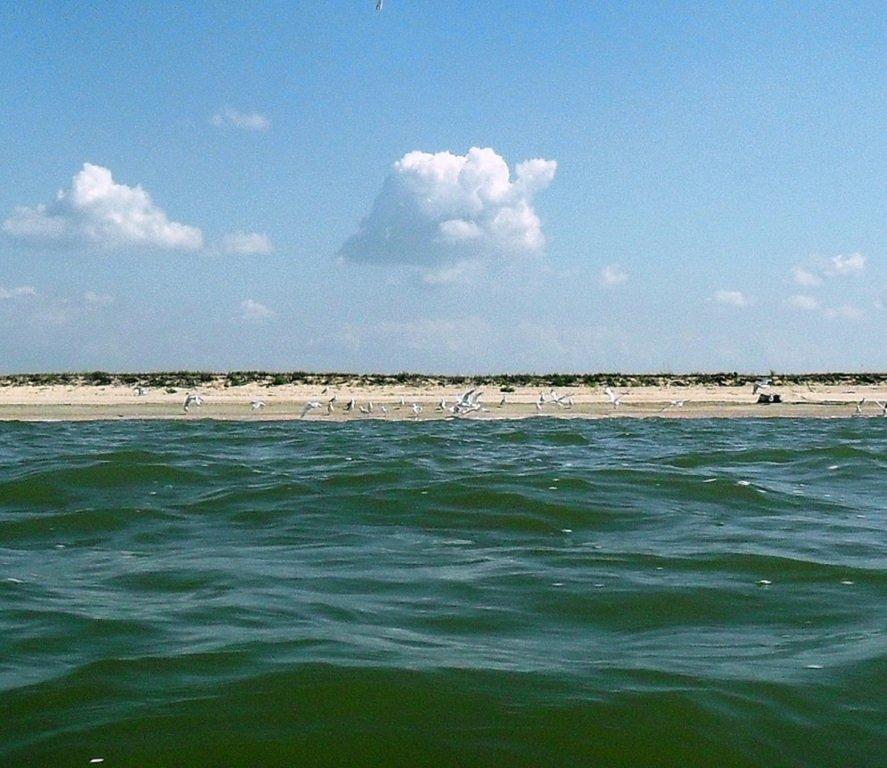На яхте, в походе, туризм, август, море Азовское... 008. 007