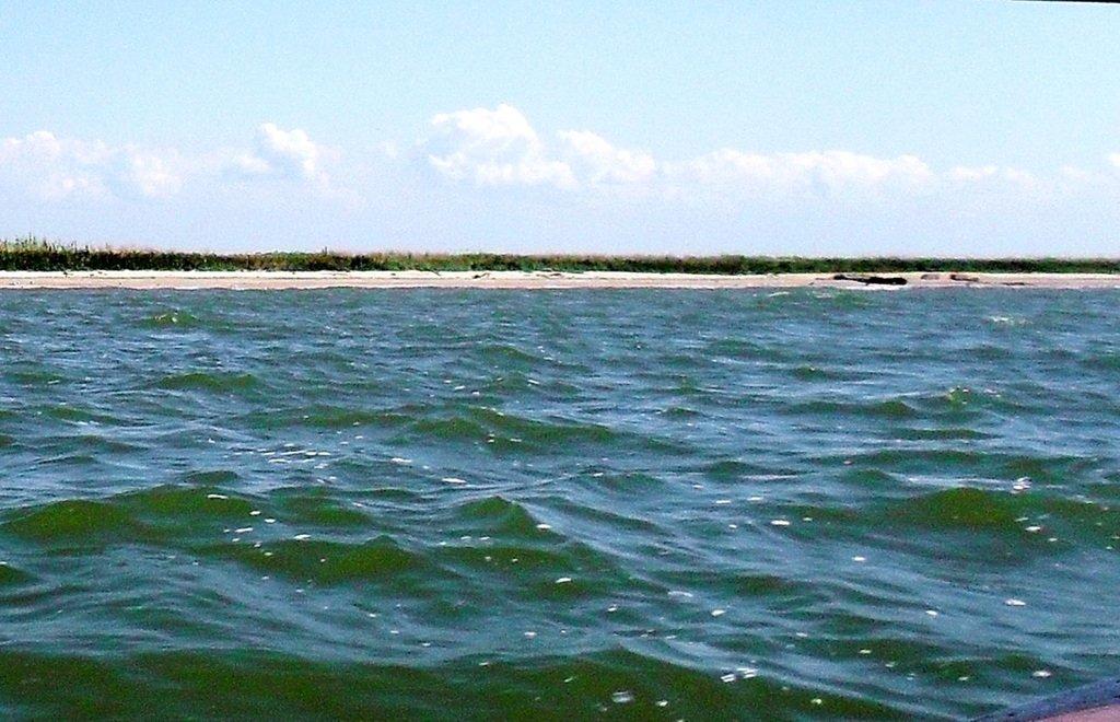 Яхтенное хождение, август, Азовское море, у Ачуевской косы... 009. 001
