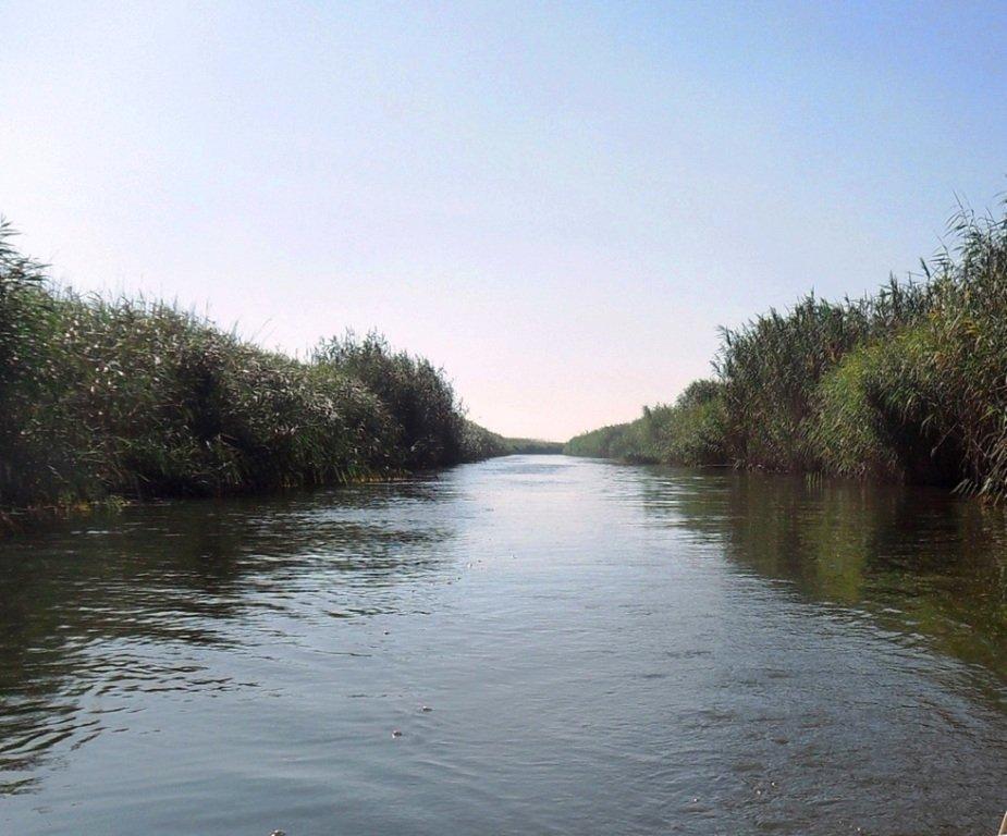 На яхте, с парусом, средь камышей, в каналах, Ачуевская коса... 011. 011