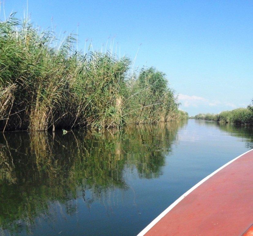 На яхте, с парусом, средь камышей, в каналах, Ачуевская коса... 011. 010