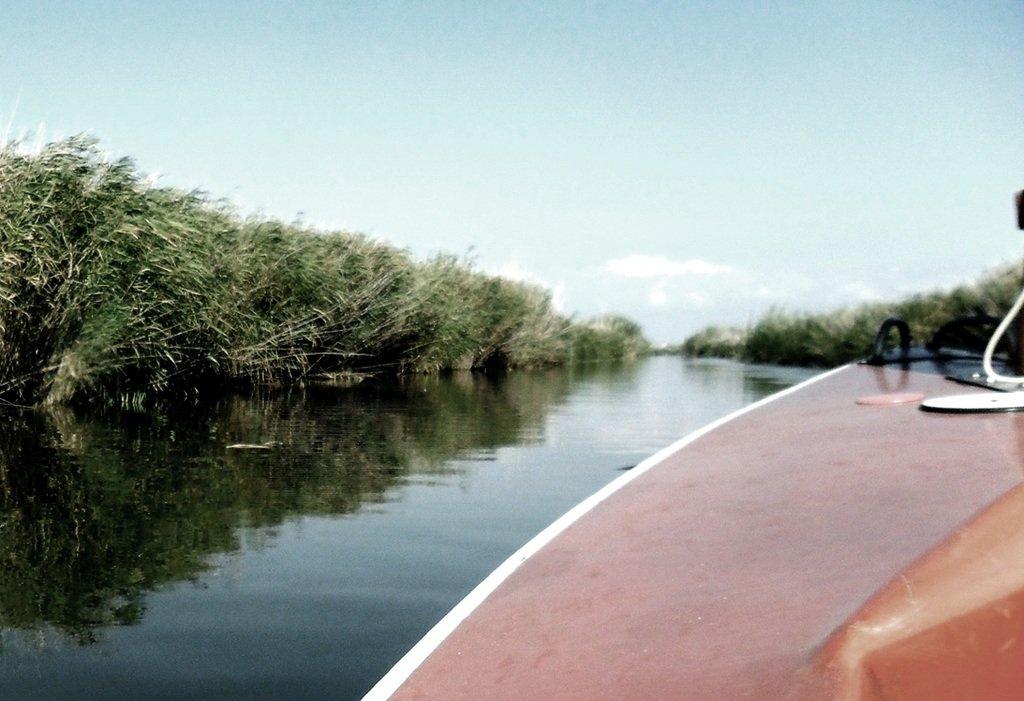 На яхте, с парусом, средь камышей, в каналах, Ачуевская коса... 011. 009