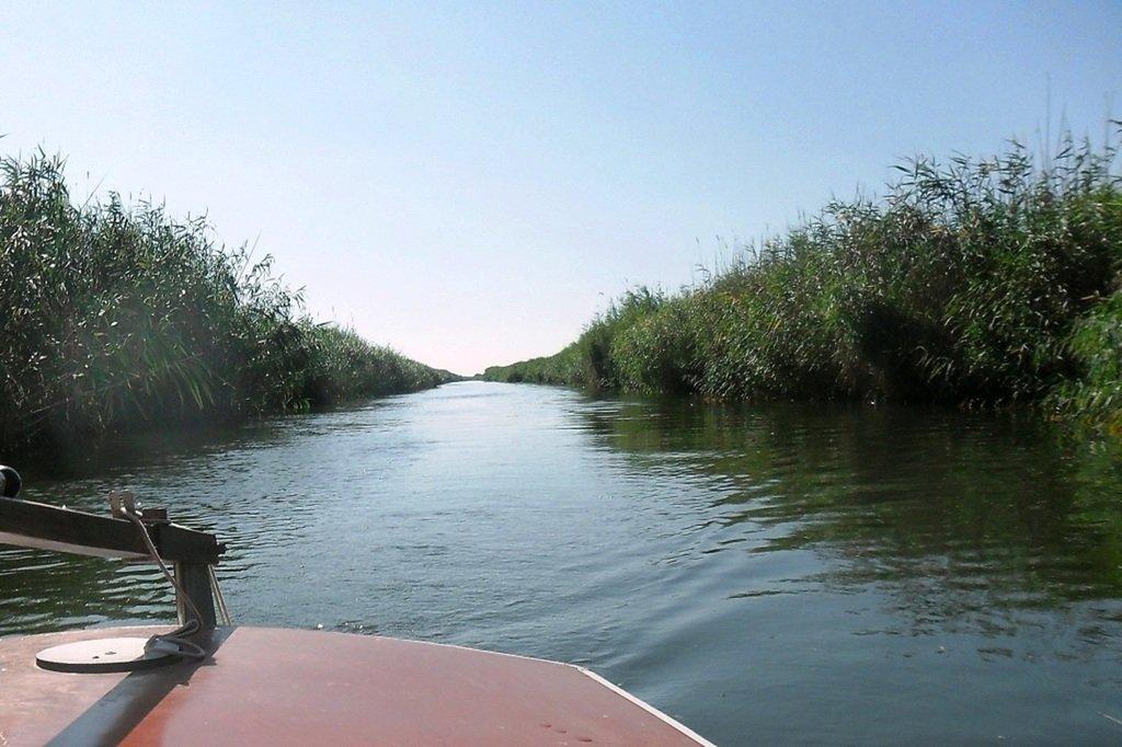 На яхте, с парусом, средь камышей, в каналах, Ачуевская коса... 011. 008