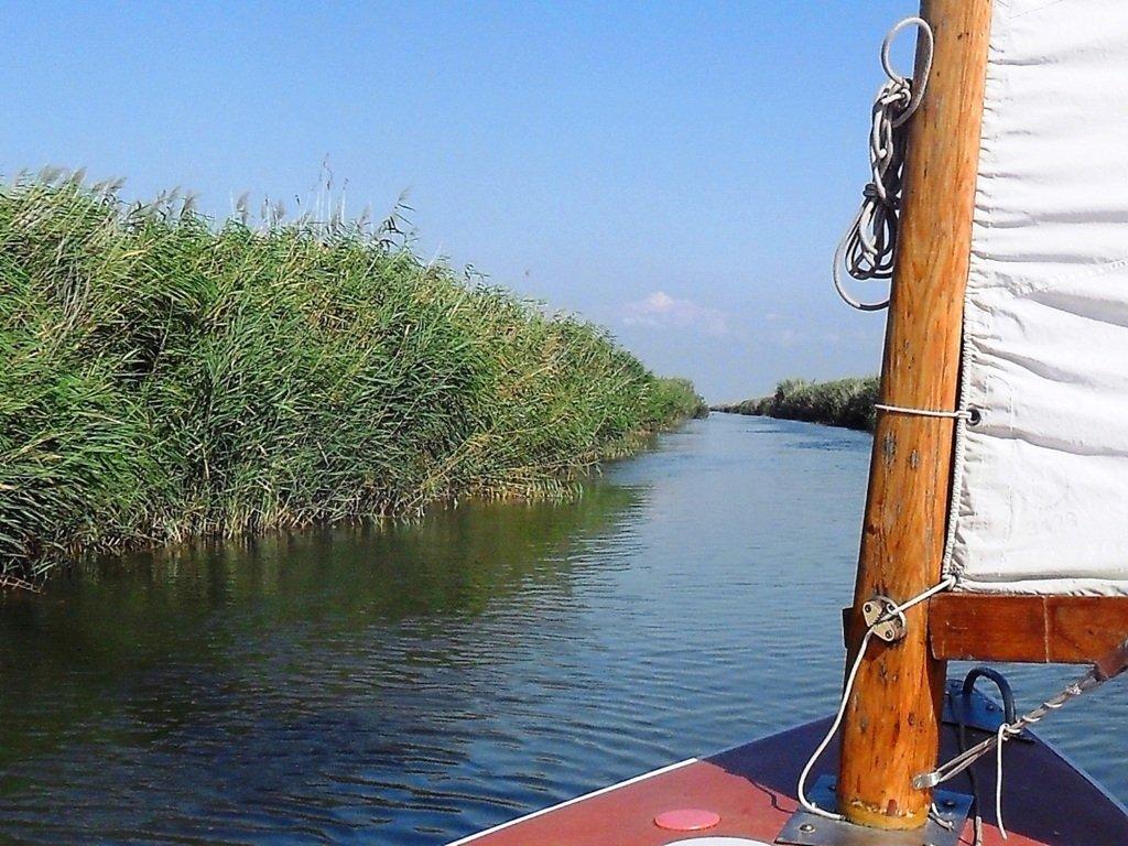 На яхте, с парусом, средь камышей, в каналах, Ачуевская коса... 011. 005