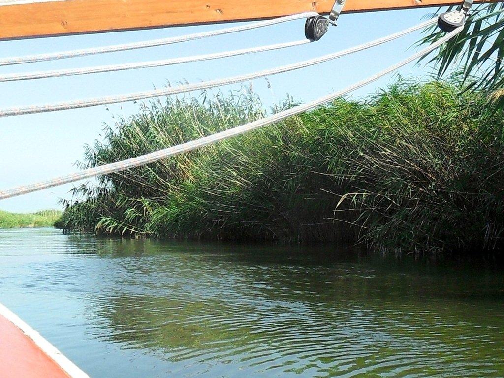 На яхте, с парусом, средь камышей, в каналах, Ачуевская коса... 011. 004