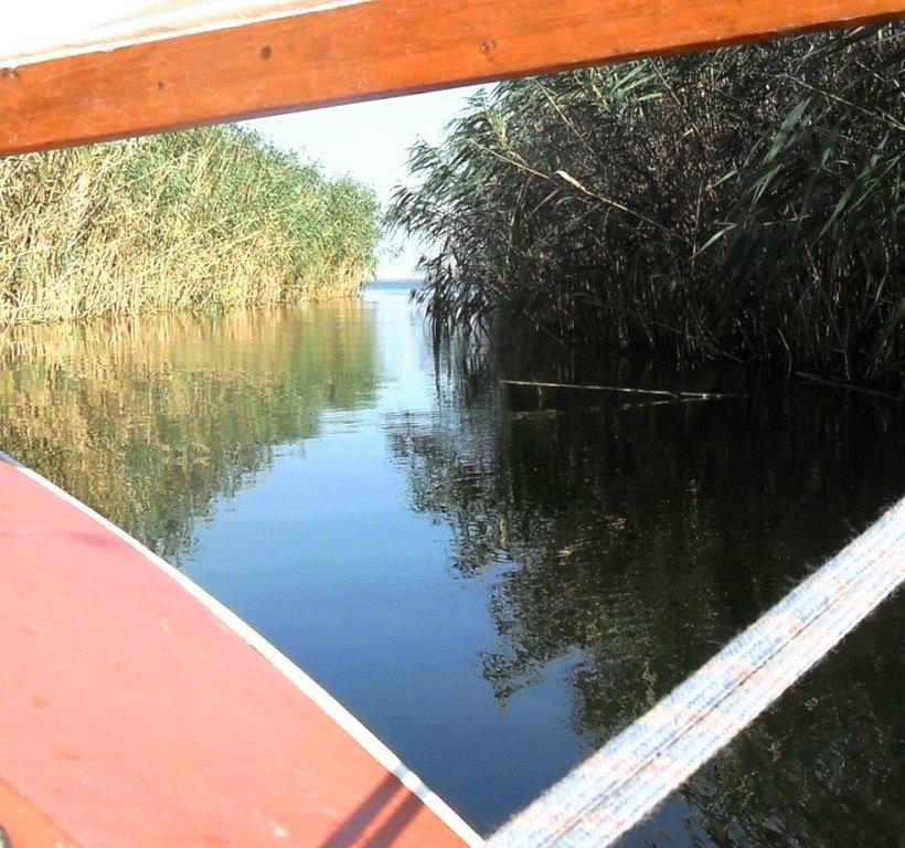 На косе Ачуевской, в каналах и лиманах, с парусом, август... 012. 005