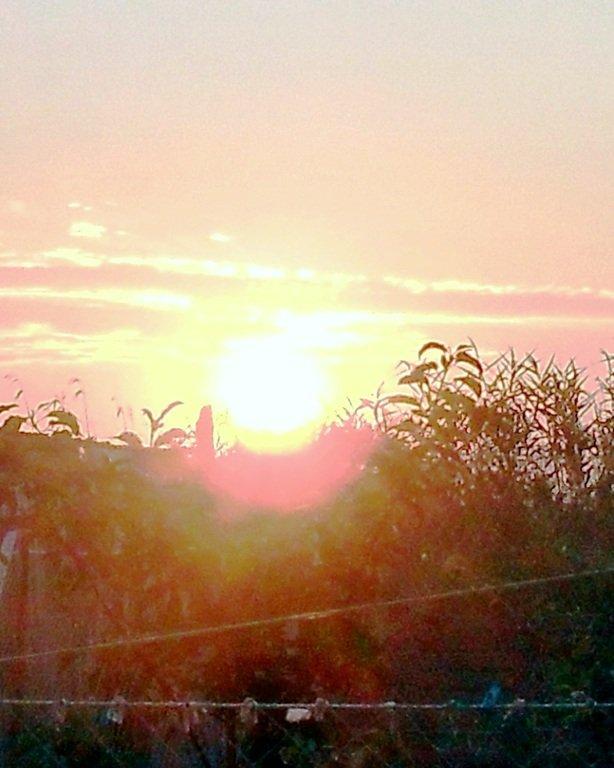 Утро, в походе яхтенном, Ачуевская коса, на водных дорогах... 015. 005