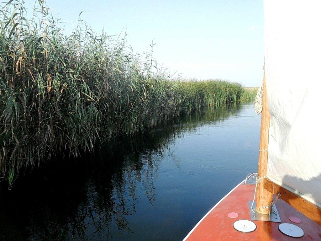 Утро, в походе яхтенном, Ачуевская коса, на водных дорогах... 015. 009
