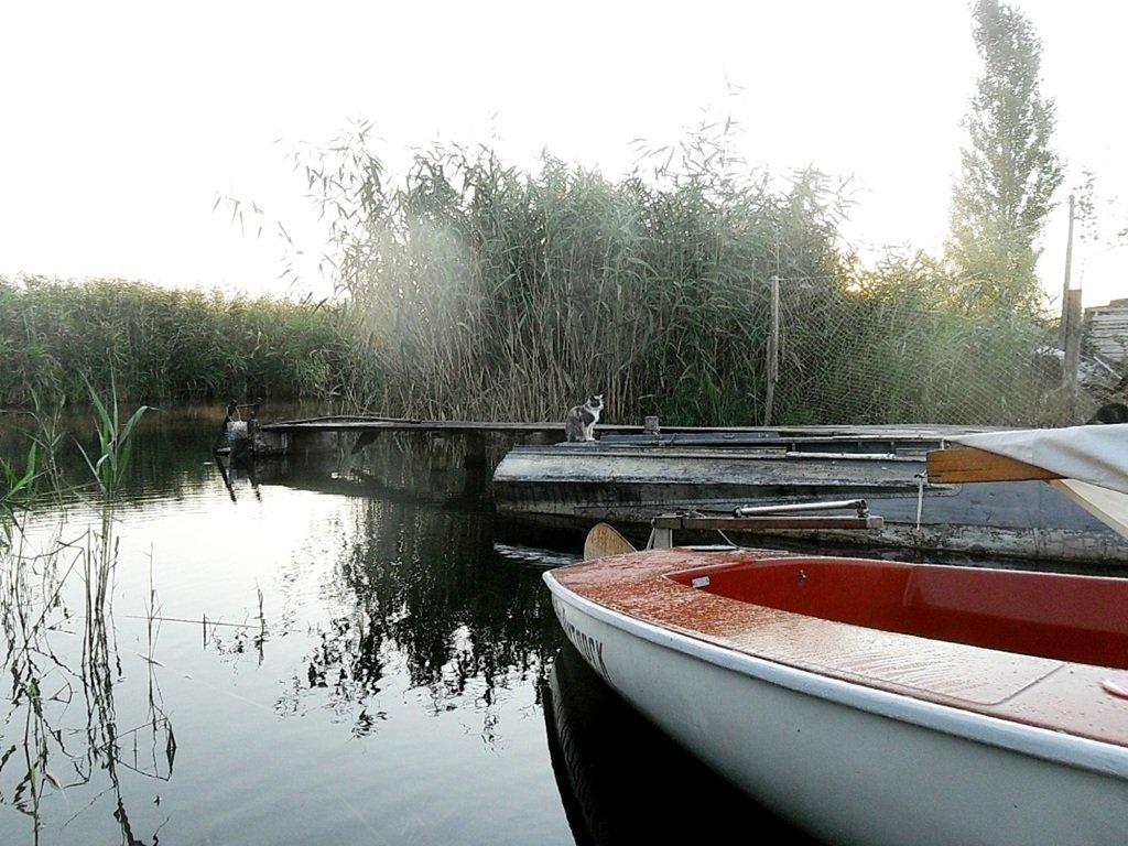 Утро, в походе яхтенном, Ачуевская коса, на водных дорогах... 015. 007