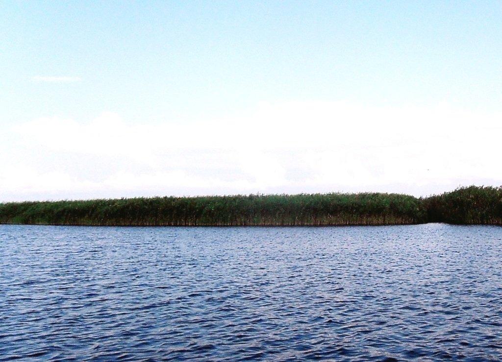 Утро, 24 августа, яхтенное хождение, коса Ачуевская. 016. 005