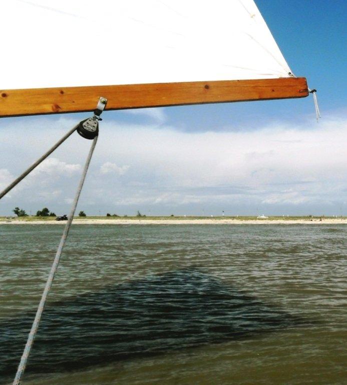 В проливе Бейсугском, высадка на берег, Ясенская коса, август ... 022. 001