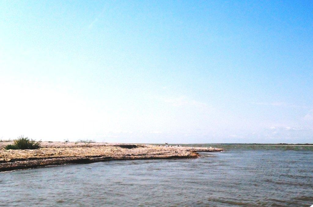 В проливе Бейсугском, высадка на берег, Ясенская коса, август ... 022. 004