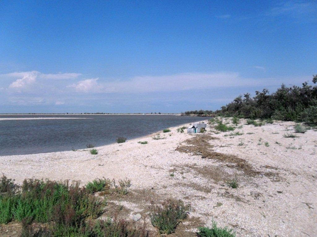 В проливе Бейсугском, высадка на берег, Ясенская коса, август ... 022. 007
