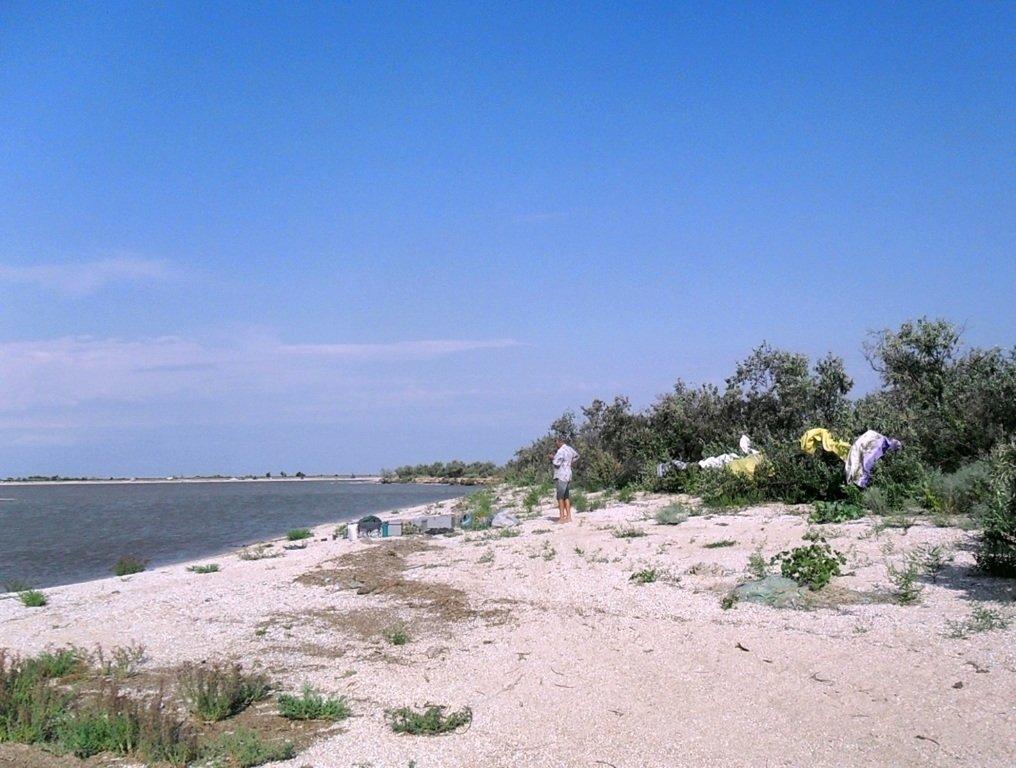 В проливе Бейсугском, высадка на берег, Ясенская коса, август ... 022. 012