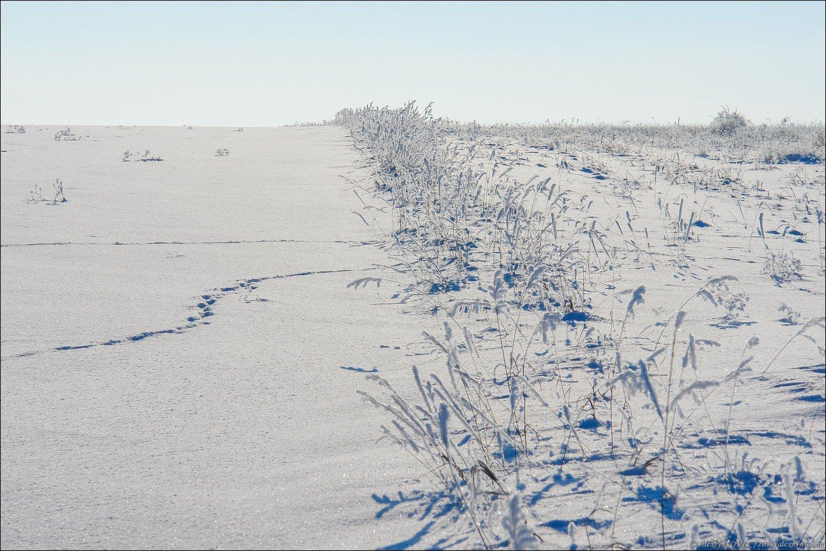 зима снежная целина фото каждом доме