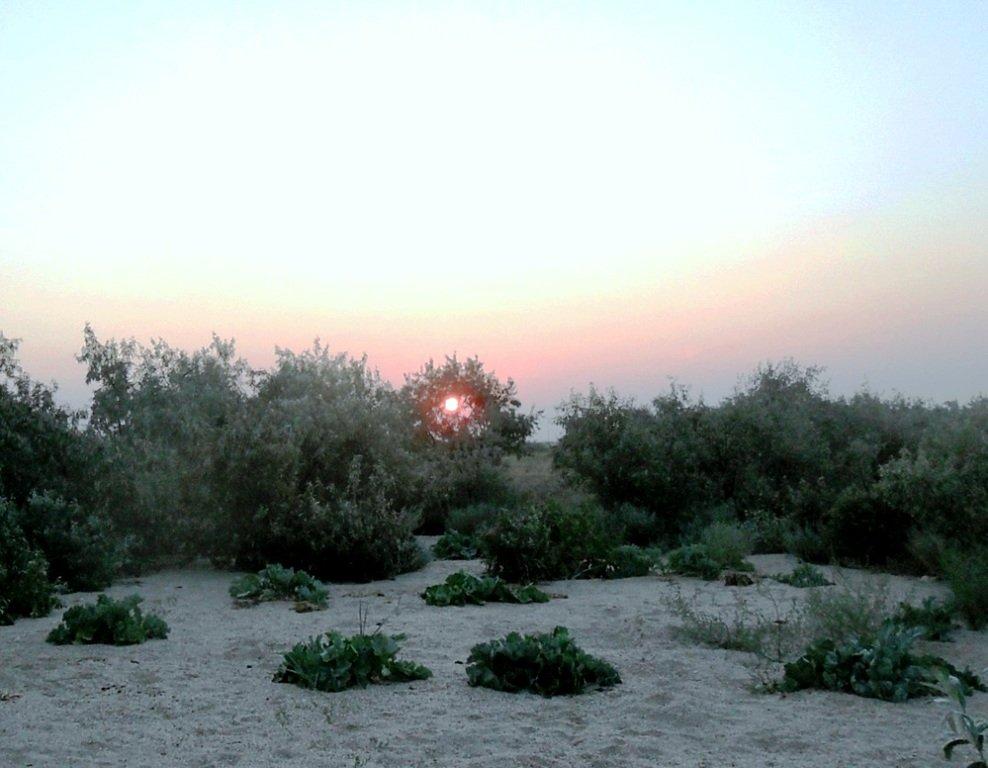 Утро раннее, на Ясенской косе, в походе, август... 026. 012