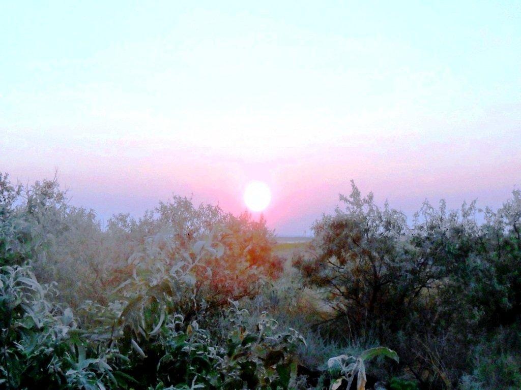 Утро, в августе, у пролива, на Ясенской косе... 027. 004