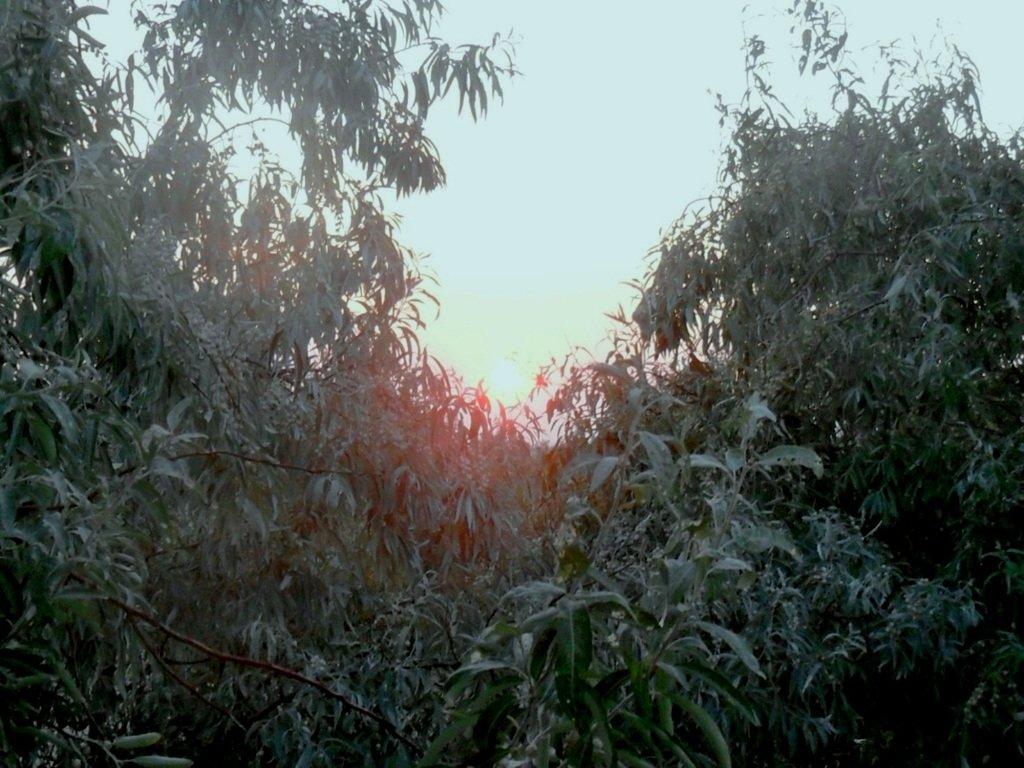 Утро, в августе, у пролива, на Ясенской косе... 027. 002