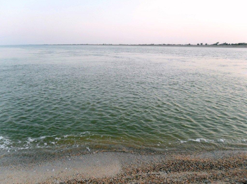 Утро, в августе, у пролива, на Ясенской косе... 027. 010