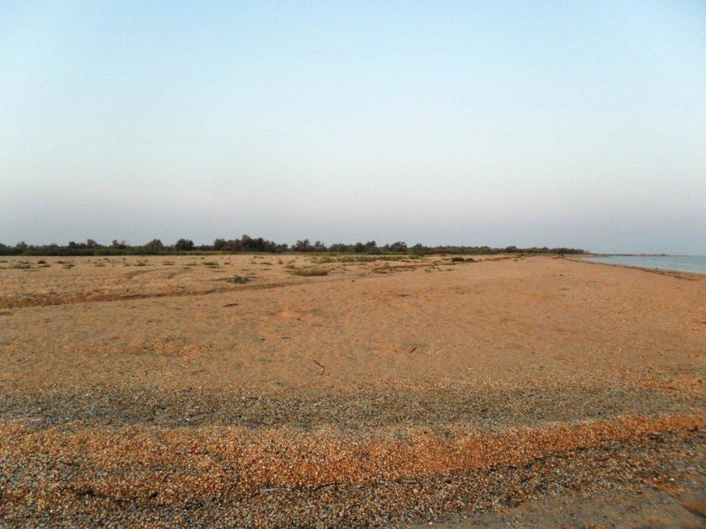 Утро, в августе, у пролива, на Ясенской косе... 027. 012