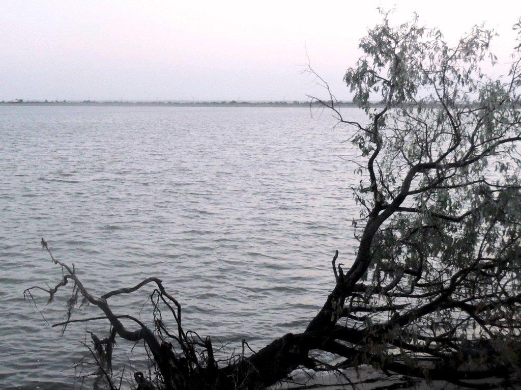 Утро, в августе, у пролива, на Ясенской косе... 027. 003