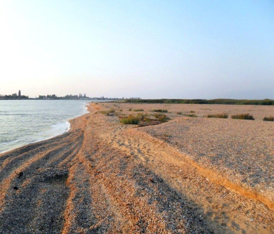 На Природе, утро, у моря, август, на Ясенской косе... 028. 007