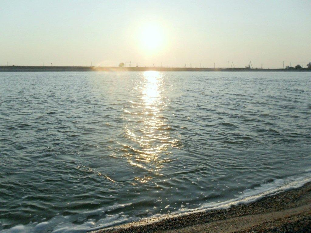 На Природе, утро, у моря, август, на Ясенской косе... 028. 006