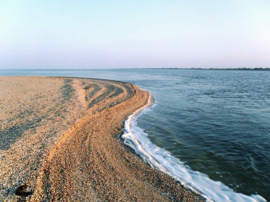 На Природе, утро, у моря, август, на Ясенской косе... 028. 005