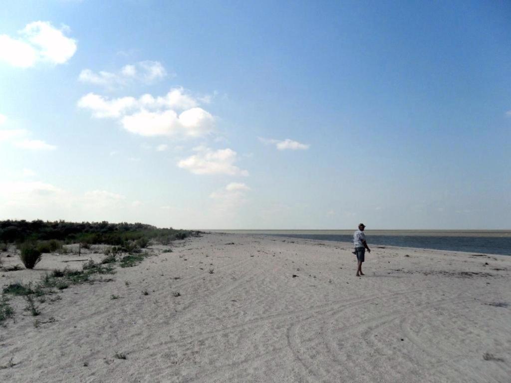 У моря, Азовское побережье, на севере Ясенской косы, август ... 032. 006