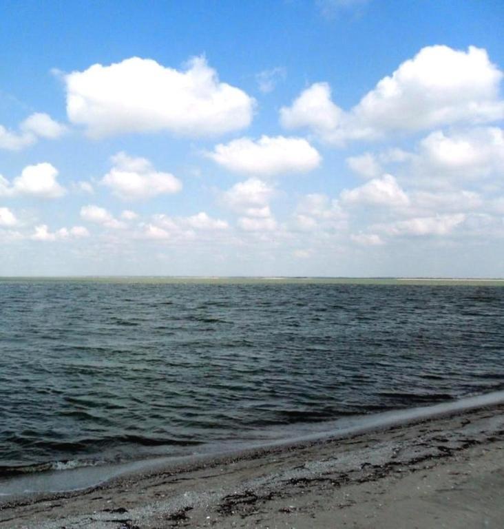 У моря, Азовское побережье, на севере Ясенской косы, август... 032. 009