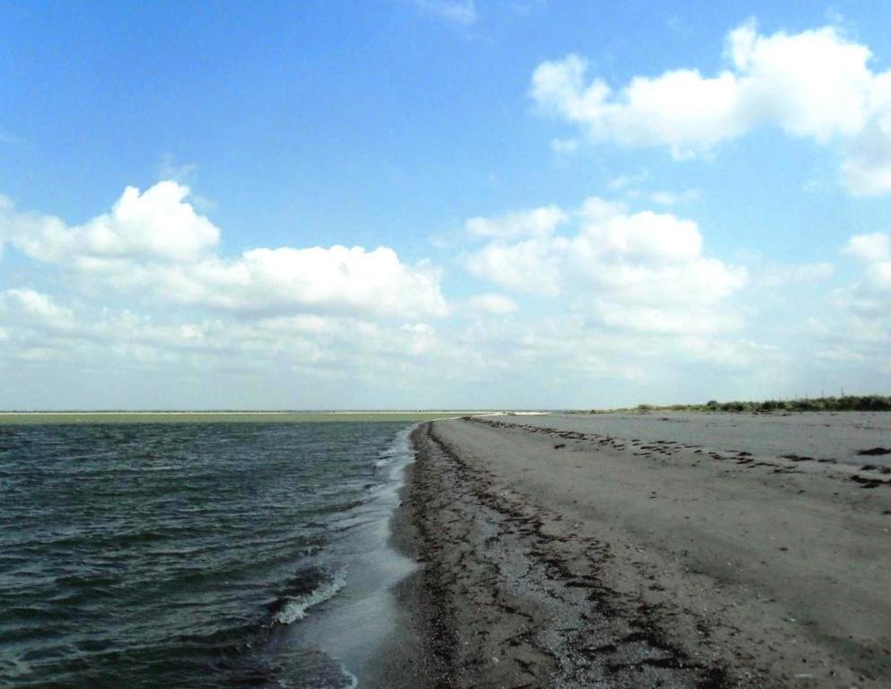У моря, Азовское побережье, на севере Ясенской косы, август... 032. 010