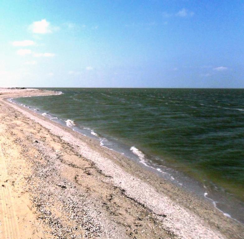 У моря, Азовское побережье, на севере Ясенской косы, август ... 032. 001