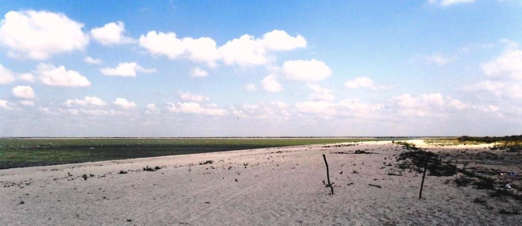 У моря, Азовское побережье, на севере Ясенской косы, август ... 032. 005