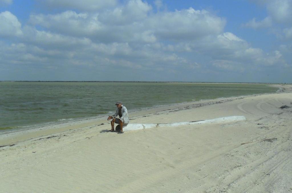 В ясный день, у моря Азовского, август, на Ясенской косе... 033. 002